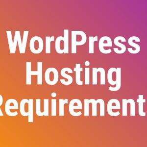 Wpassist Wordpress Hosting Requirements
